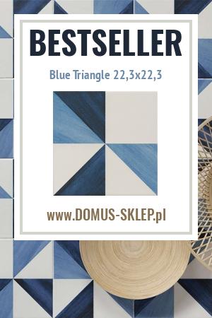 Blue Triangle 22,3×22,3
