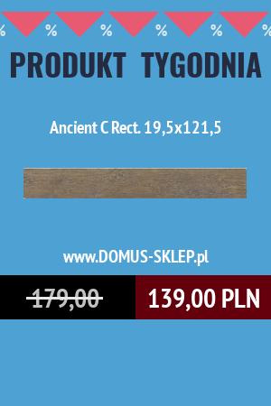 Ancient C 19,5×121,5