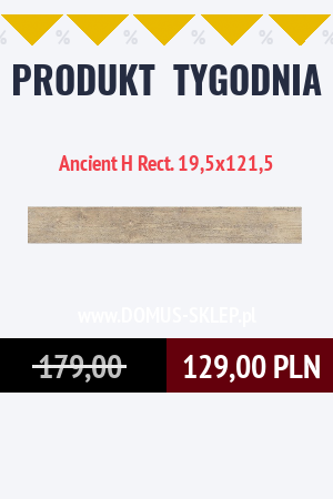 Ancient H Rect. 19,5×121,5