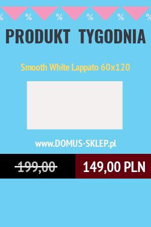 Smooth White Lappato 60×120
