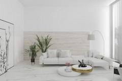 calacatta-borghini-polished-rect-60x1201111