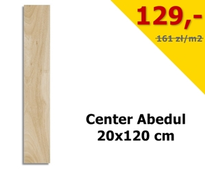 center.1a1