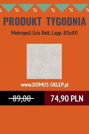 Metropoli Gris Rett. Lapp. 80×80