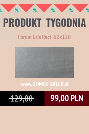 Forum Gris Rect. 62×120