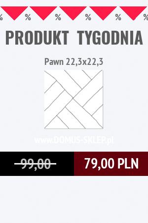 Pawn 22,3×22,3