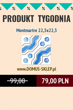 Montmartre 22,3×22,3