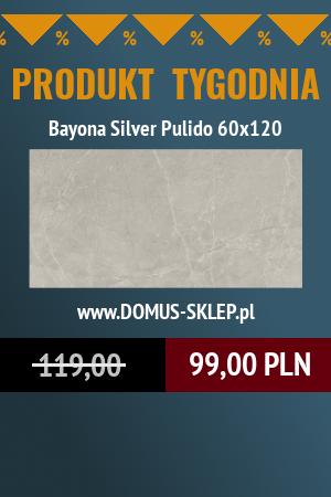 Bayona Silver Pulido 60×120