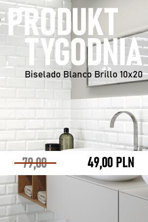 Biselado Blanco Brillo 10×20