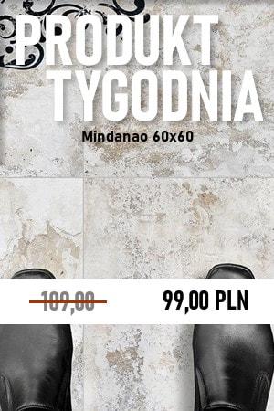 Mindanao 60×60