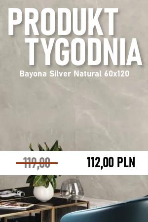 Bayona Silver Natural 60×120